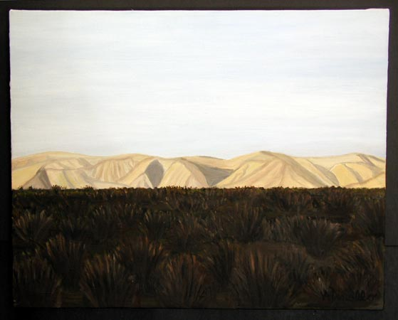 Death Valley Oil on Canvas, 20 x 16 in. For Sale